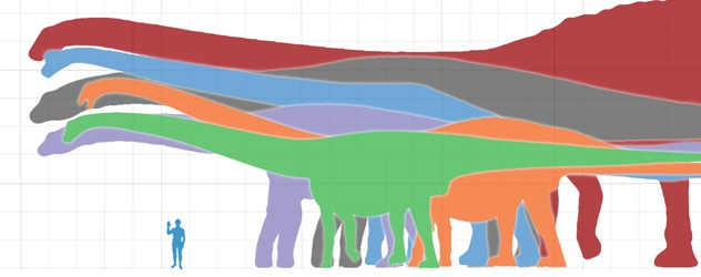 Biggest animal ever to have lived? Bruhathkayosaurus may ...