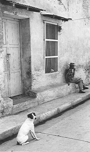 Lado de la sombra - Hernan Diaz, 1969
