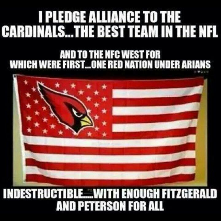 Arizona Cardinals Super Fans! NFL Football