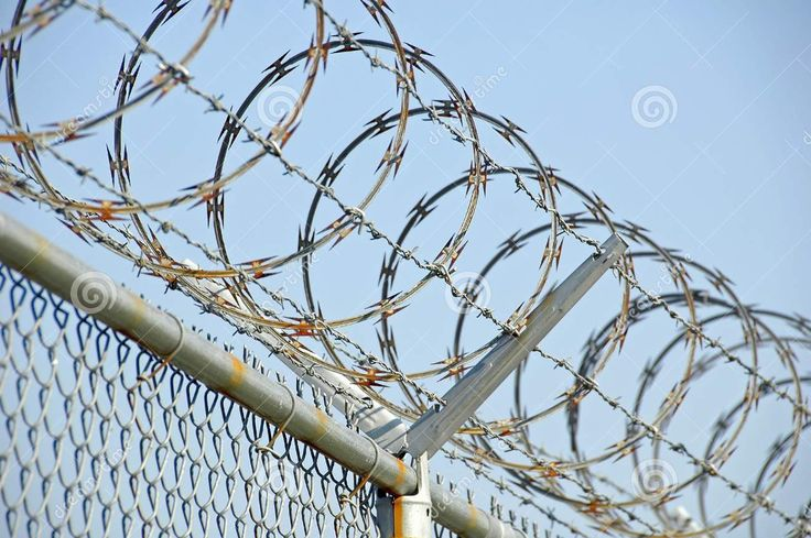 8 best Barbed Wire Reference images on Pinterest   Chicken wire ...