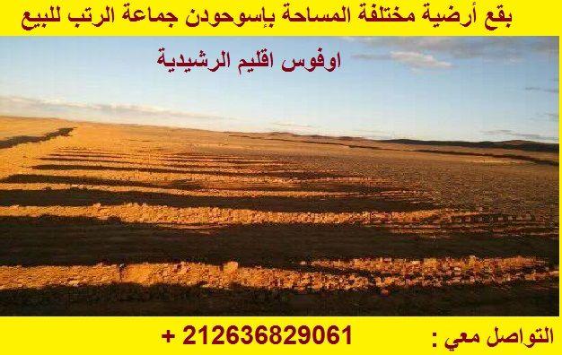 32081320 2048792065335539 3027928317064904704 N Blog Posts Outdoor Farmland