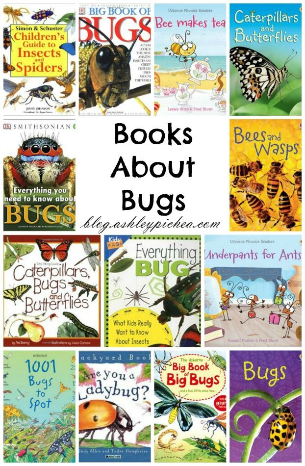 This month we're doing lots of reading and research about bugs, and we thought we'd share some of the books about bugs that we've enjoyed or have on our library list. || CLICK HERE to see our list...