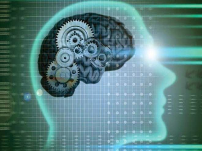 Стань умнее развитие мозга на практике важная сила интеллекта в развитии человека