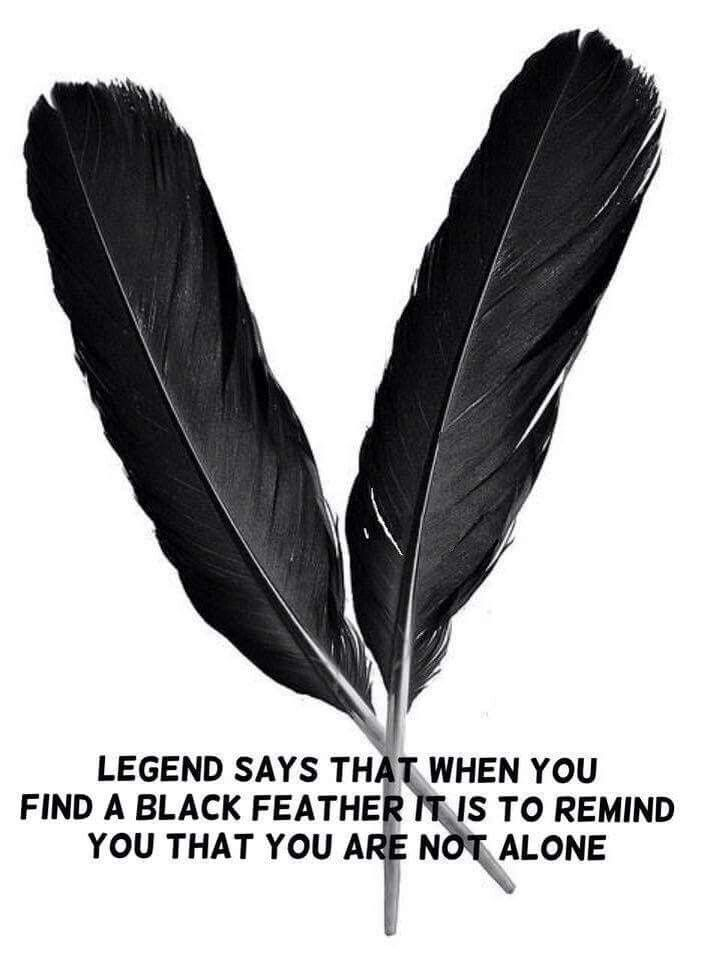 Black Feathers Are Very Rare And Mean An Angel's There. Next Time You Find One, Have No Doubt, Loved Ones Are Showing You They Care! ><