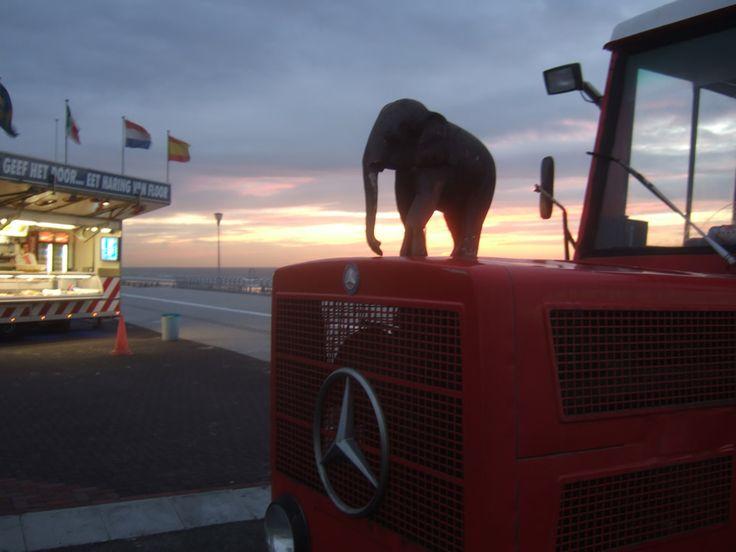 Zandvoort Elephant