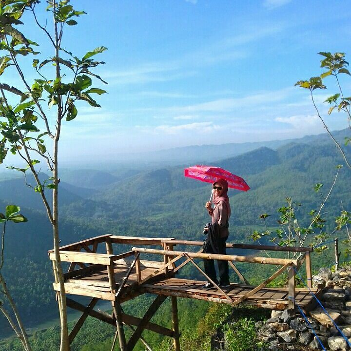 Kemayu  . .  Loc; kediwung mangunan dlingo bantul yogyakarta  #nature #forest #hill #tree #green #sky #view #viewdeck #landscape #umbrella #naturelovers #skylovers #adventure #vacation #dolanbantul #explorebantul #jelajahbantul #jogjaku #visityogya #yogyakartacity #pesonajogja #jogja #jogjacekrek #jogjabanget by Jelajah Bantul
