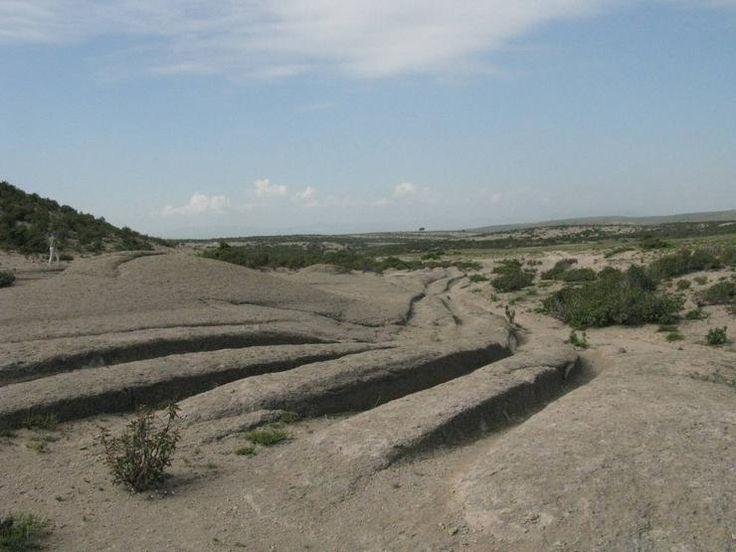 Как выглядел пра-автомобиль, чьим следам более 12 млн. лет - Фан зона - АвтоВзгляд