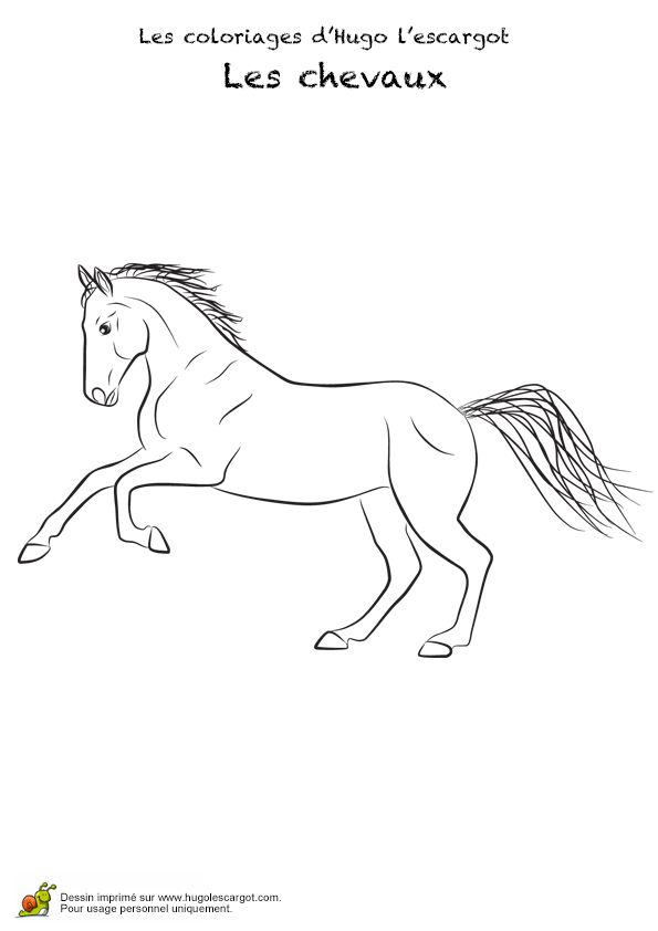 191 best images about coloriages animaux de compagnie on - Coloriage chevaux imprimer ...