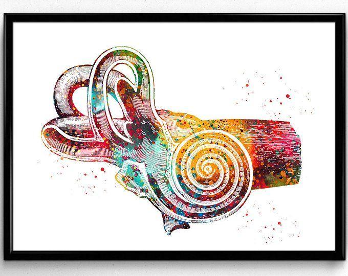 Ear Anatomy Art Watercolor Print Audiologist Gift Audiology Clinic Medical Art