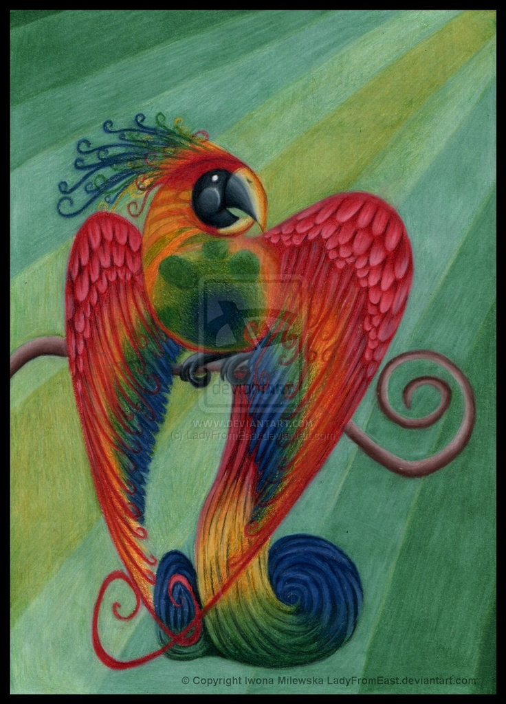 Multicoloured Parrot by ~LadyFromEast on deviantART