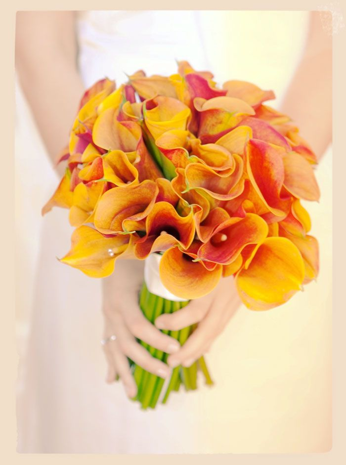 In #Perth, Floret boutique would specialize in arranging the flowers and deliver the quality service to your beautiful #wedding.