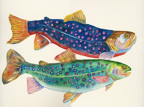 "Watercolor fish painting by Suzanne Leonard ""I generally characterize my artwork as loose realism, working from the strength of the medium while building on the fluid nature and translucence of watercolor painting."""