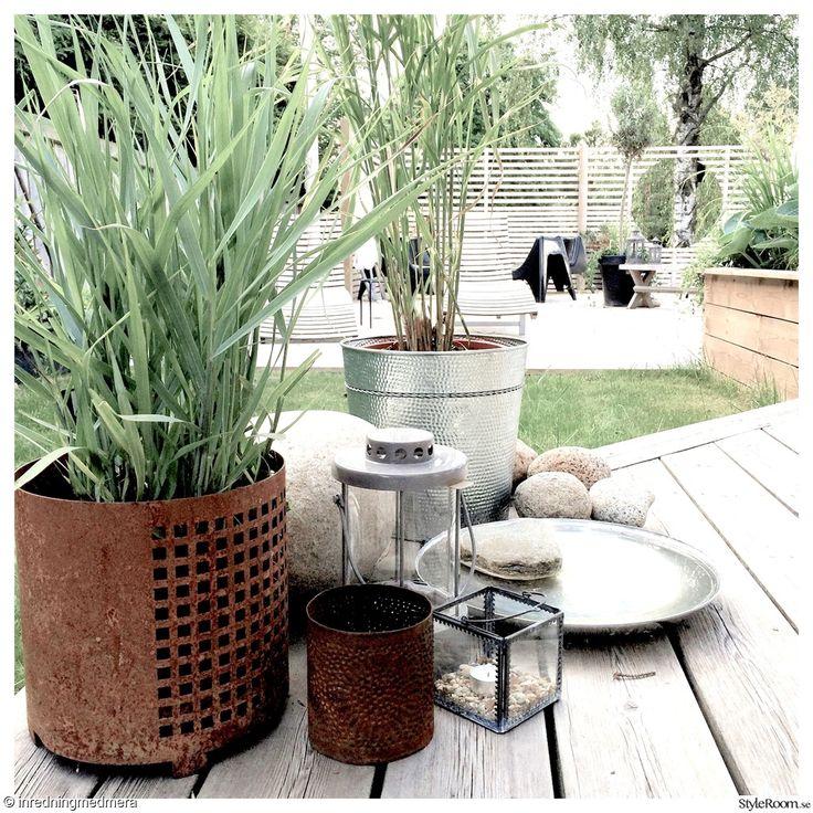 gräs,rost,fågelbad,altan,spaljé,terass,uteliv,inredningsdetaljer