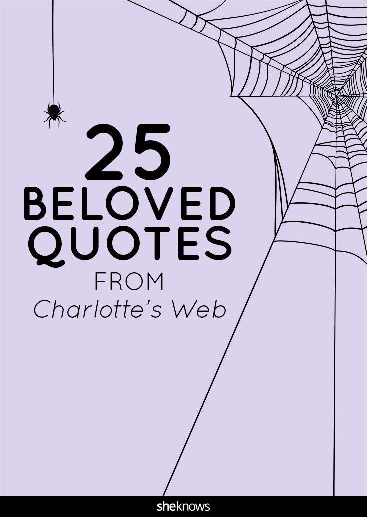 Best 25+ Charlottes web quotes ideas on Pinterest | Typewriter ...