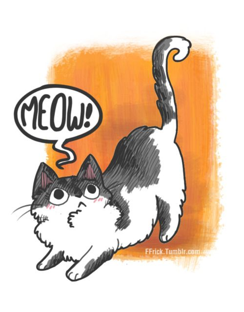 http://meowoodle.tumblr.com  Collection of drawings, doodles and sketches  by designers and illustrators of their cats.