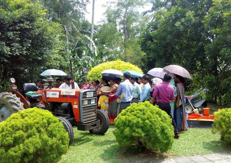 Sri lanka agriculture technology and culture