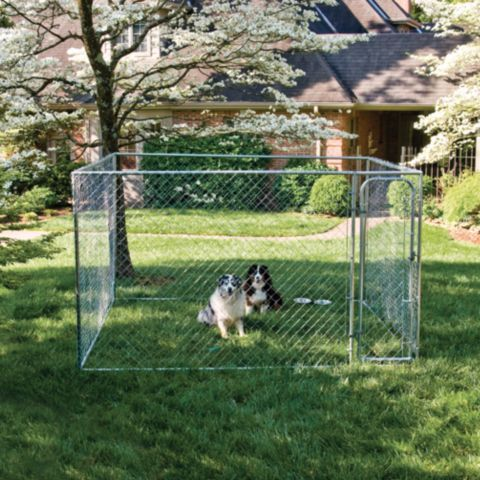Tractor supply online store pet pins pinterest dog kennels pet
