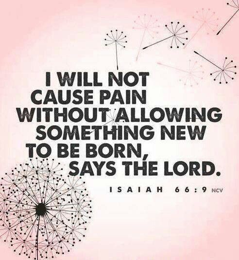 God will heal the brokeness:-)