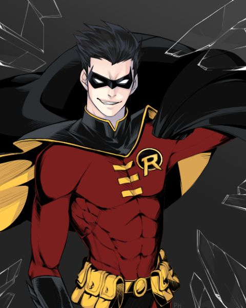 Red Robin | Hero Complex | Pinterest | Robins and Red