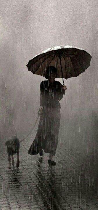 #leiter #rainy #saul #dayПодборка фото…