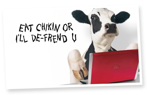 Chick-fil-A: Campaign History                                     2011 The cows prove to be social creatures, accruing over 500,000 Facebook fans.