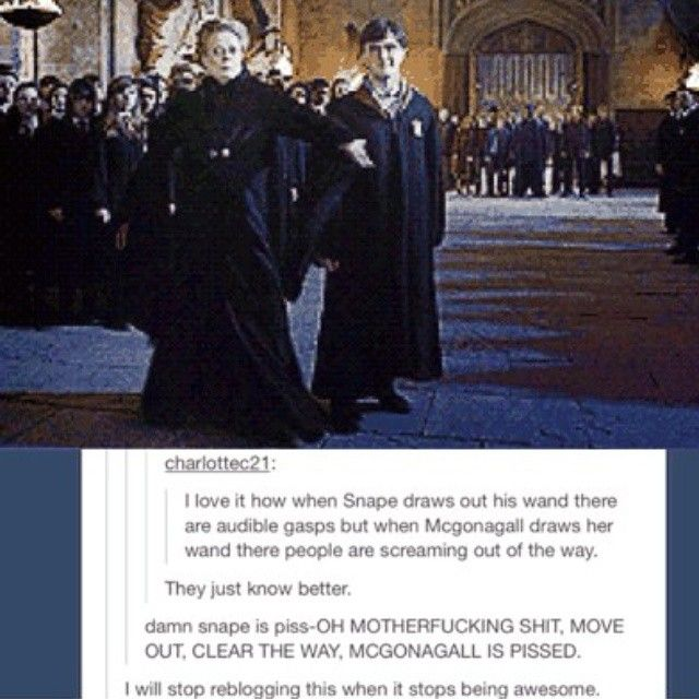 Hogwarts / Harry Potter / McGonagall / Snape