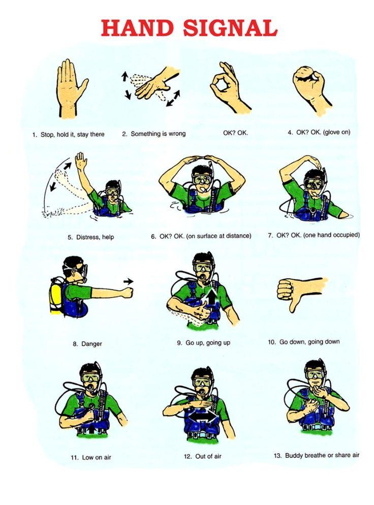 *Real* PADI Scuba Hand Signals