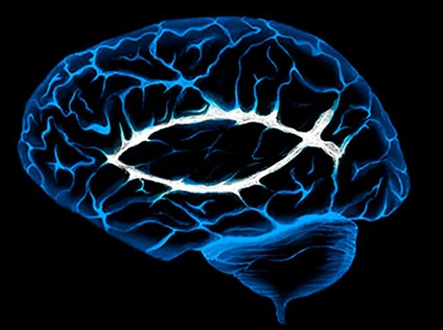 """La investigación conecta directamente la región estudiada con la religiosidad, pues fue posible percibir sus interacciones en el cerebro. """"Necesitamos en..."""