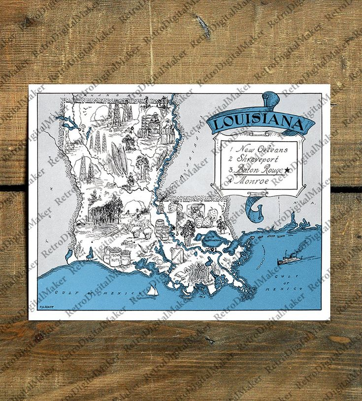 Louisiana LA United States whimsical map by