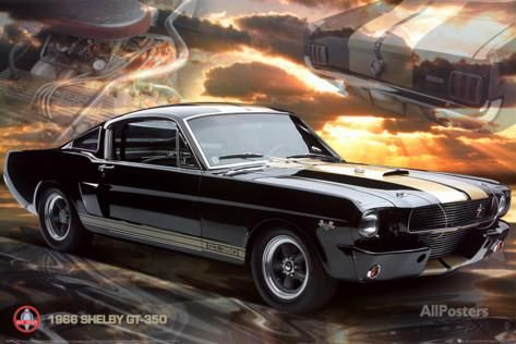 Ford Shelby - Mustang 66 GT 350 Posters at AllPosters.com