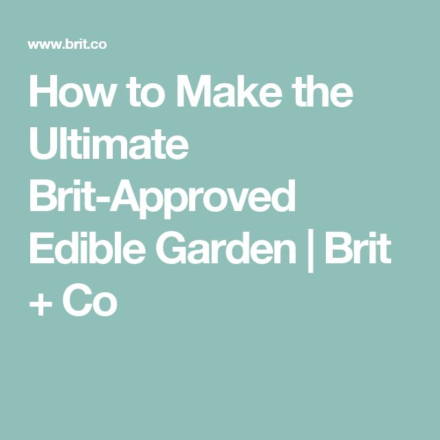 How to Make the Ultimate Brit-Approved Edible Garden | Brit + Co