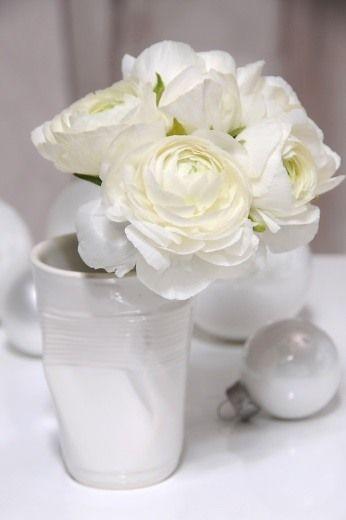 #Ranunculus asiaticus www.ibulb.org