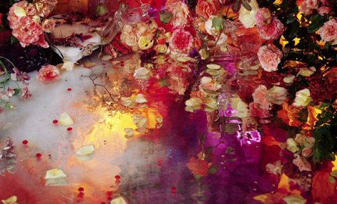 photography from Margriet Smulders......flower, form and color......gorgeousness.