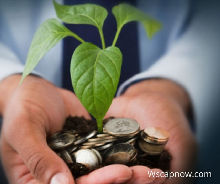 Learn How to be Prepared to Apply for a Small Business Finance. Have a look at the steps required before applying for any business funds. Read more here: http://www.wscapnow.com/blog/learn-how-to-be-prepared-to-apply-for-a-small-business-finance/