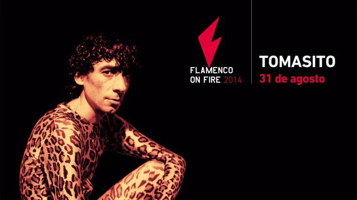 Tomasito :: Flamenco On Fire Pamplona :: 31 de agosto de 2014