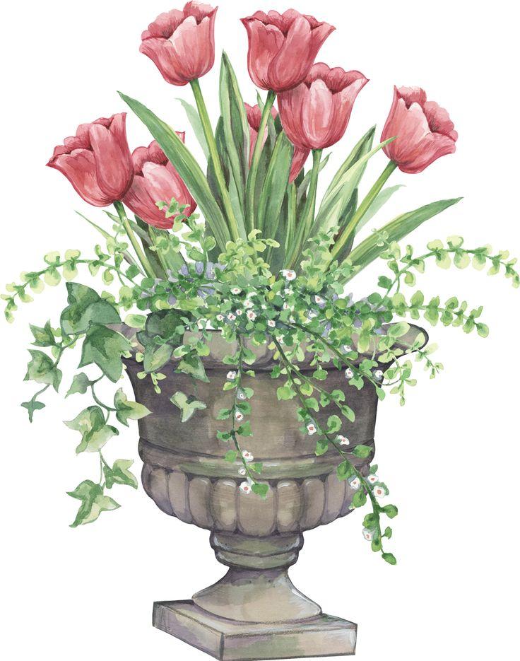 tulip planter: