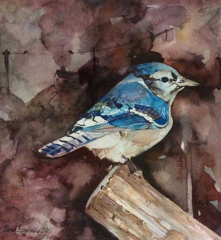 Kuş Suluboya Resim -Turan Enginoğlu