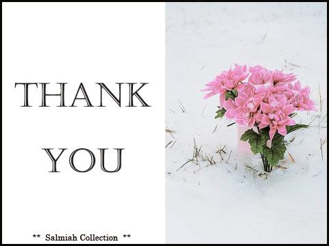 Flowers of Life: Thank You Card 16