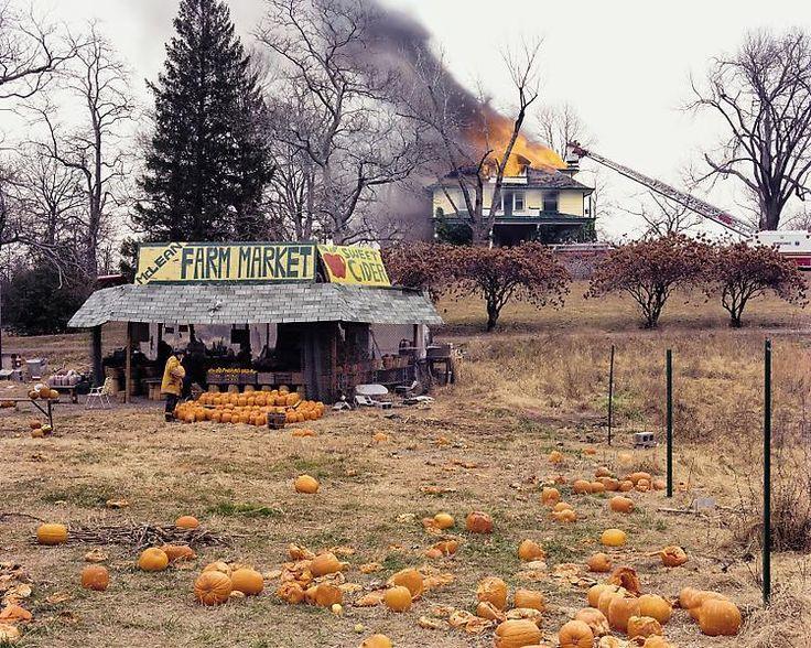 joel sternfeld- pumpkin