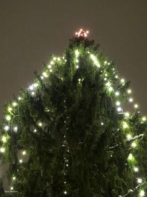 Christmas tree, Lahti
