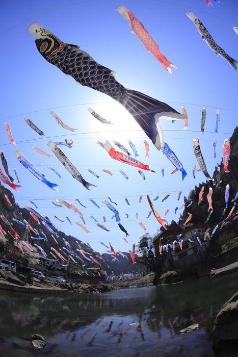 鯉のぼり #Osaka #Japan #spring Osaka Japan spring