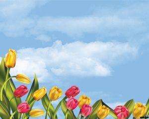 Tulipanes PPT es un diseño de PowerPoint que contiene tulipanes con un fondo de cielo con nubes y que puede ser ideal para presentar en slides que requieran mostrar algo relacionado con jardines, flores, el campo, agro o similar