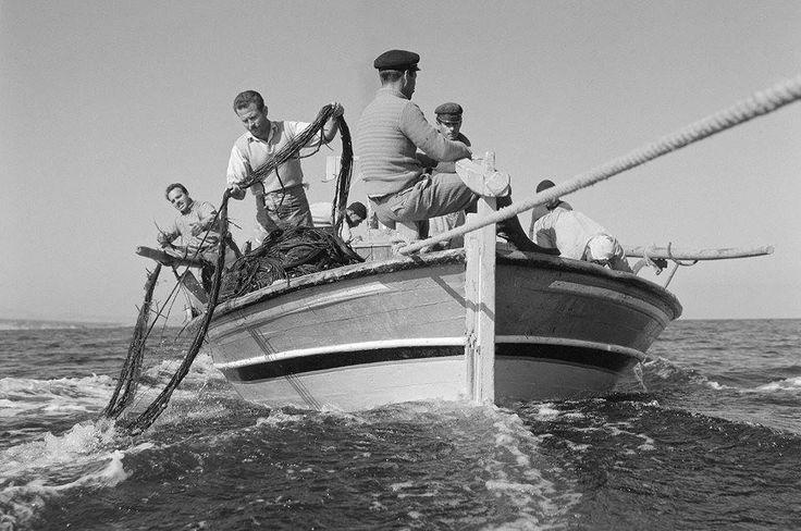 Λέσβος 1958 φωτ.Δημητρης Χαρισιάδης