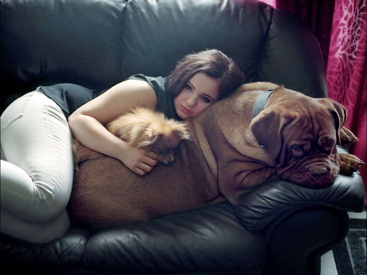 Winner of the LIris dOr/Photographer of the Year in the 2013 Sony World Photography Awards is Andrea Gjestvang from Norway for her work documenting teenage survivors of the Utoya Island massacre in Norway in 2011. This photo shows Iselin Rose Borch, aged 15, at home in Grong, Norway, with her pet dogs.