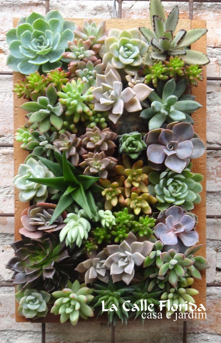 modulo para painel vertical... http://www.elo7.com.br/jardim-vertical-com-suculentas/dp/3549CD