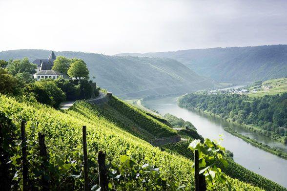 Mosel, Germany's most Prestigious Wine Region.