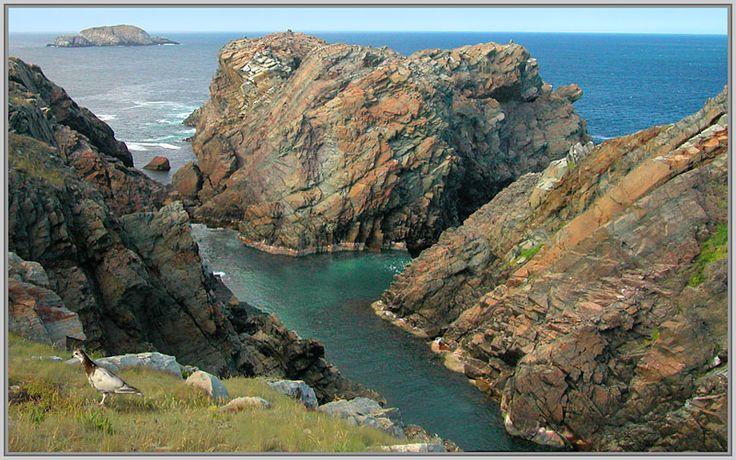 Cape Bonavista - Bonavista, Newfoundland