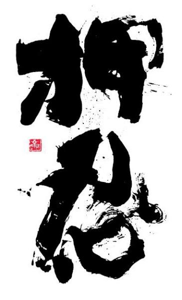 43 Best Shinkyokushin Kyokushin Images On Pinterest