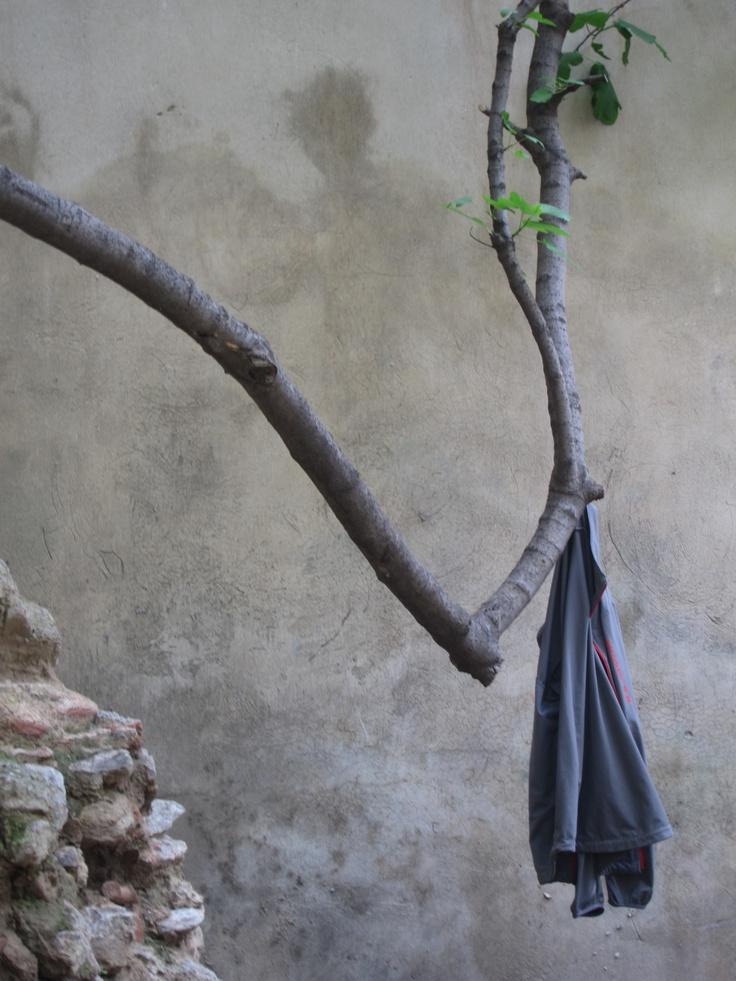 Jacket hanging on a branch.     KIDILIX