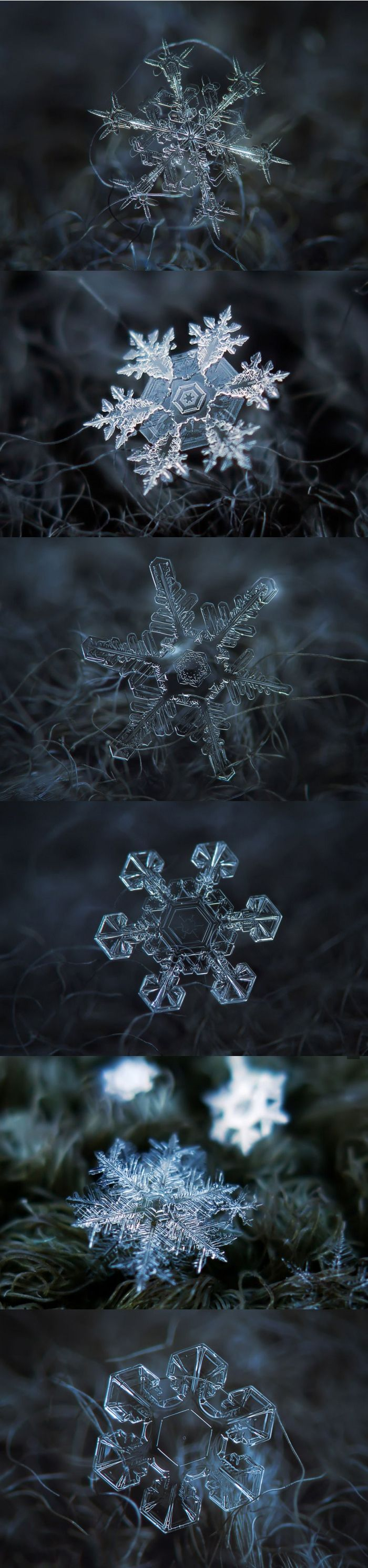 Snowflake close-ups by Russian photographer Alexey Kljatov.
